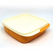 Tupperware Square Divided Lunch Box - Mango