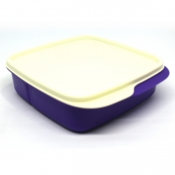 Tupperware Square Divided Lunch Box - Grape Fizz