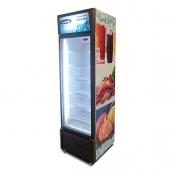 Fujidenzo Upright Freezer