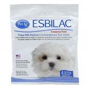 Buy  Esbilac Emergency Feeding Pack 3/4 oz online at Shopcentral Philippines.
