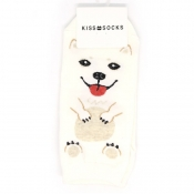 Buy  Puppy Design Low-Cut Socks 4 online at Shopcentral Philippines.
