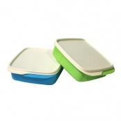Buy Tupperware Square Divided Lunch Box - Honeydew  online at Shopcentral Philippines.