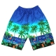Men's Board Shorts Light Blue