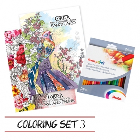 Buy Coloring Set 3 online at Shopcentral Philippines.