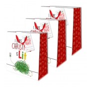 Buy Sterling Christmas Totebag w/ Gift Tag Lit Lights Medium 3's online at Shopcentral Philippines.