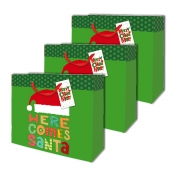 Buy Sterling Christmas Totebag w/ Gift Tag Green Dots L Horizontal 3's online at Shopcentral Philippines.