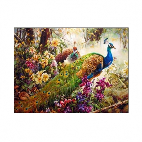 "Buy Paint by Number Kit 16""x 20"" Peackock online at Shopcentral Philippines."