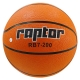 Raptor Basketball RB7-200