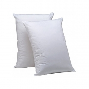 Buy Buy 1 Take 1 Premium Pillow online at Shopcentral Philippines.